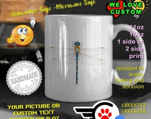 The dragonfly is an aquatic insect